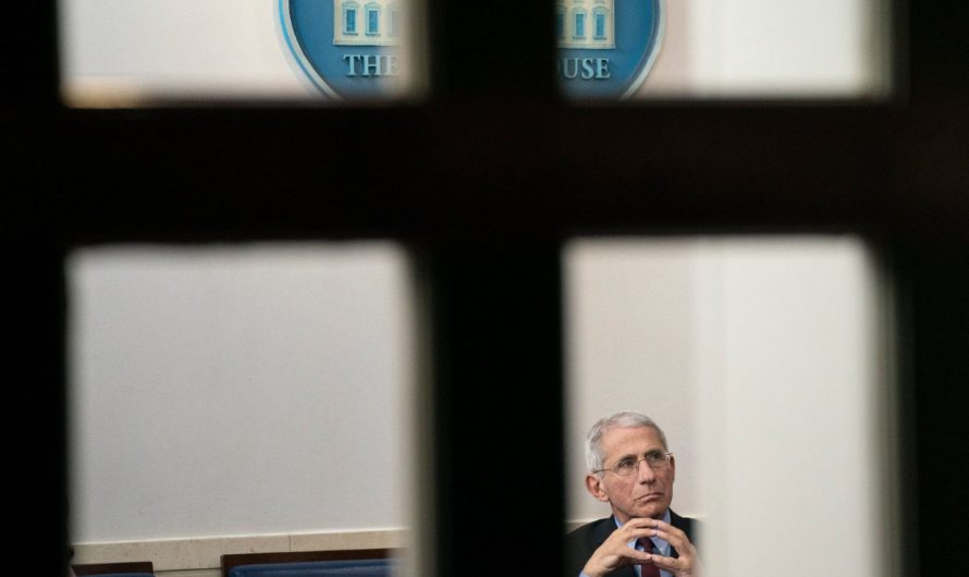 Dr. Anthony Fauci has a target on his back