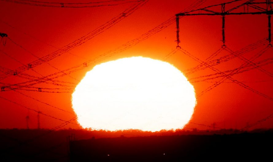 Heat waves have become more frequent and intense, in most of the world due to the 1950's: study