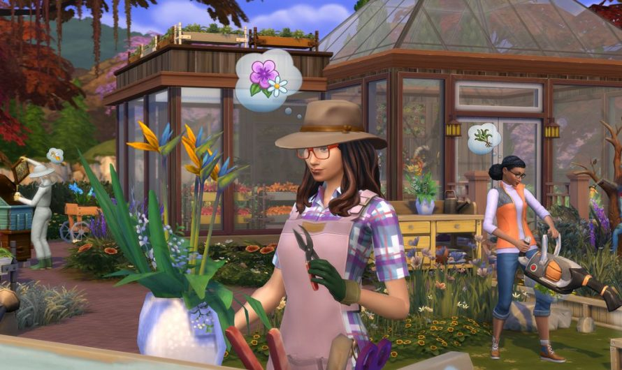 Sims is getting a competition-based television program