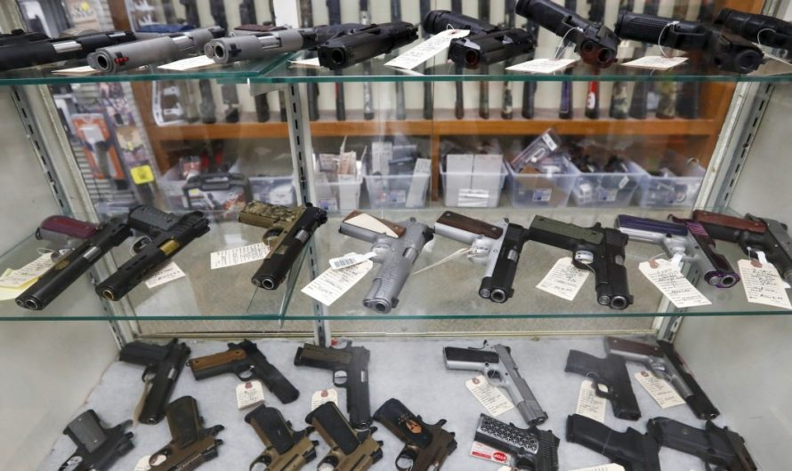 Gun-sale restriction 'obliterates' millions of Floridians' constitutional rights