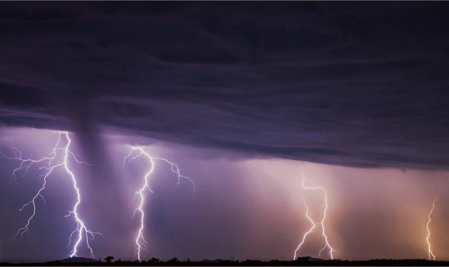 Which state is America's 'lightning king'?