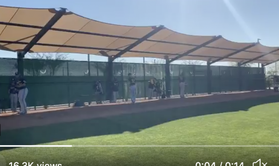 Top Tweets: Spring training has arrived for Cactus Crew
