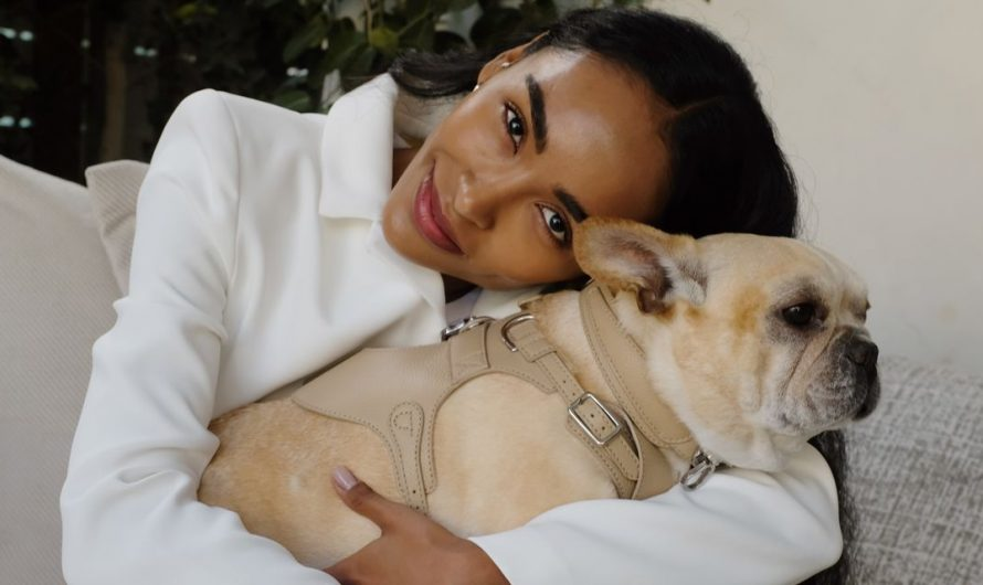 Dog Fashion for Your Pandemic Puppy Goes Luxury