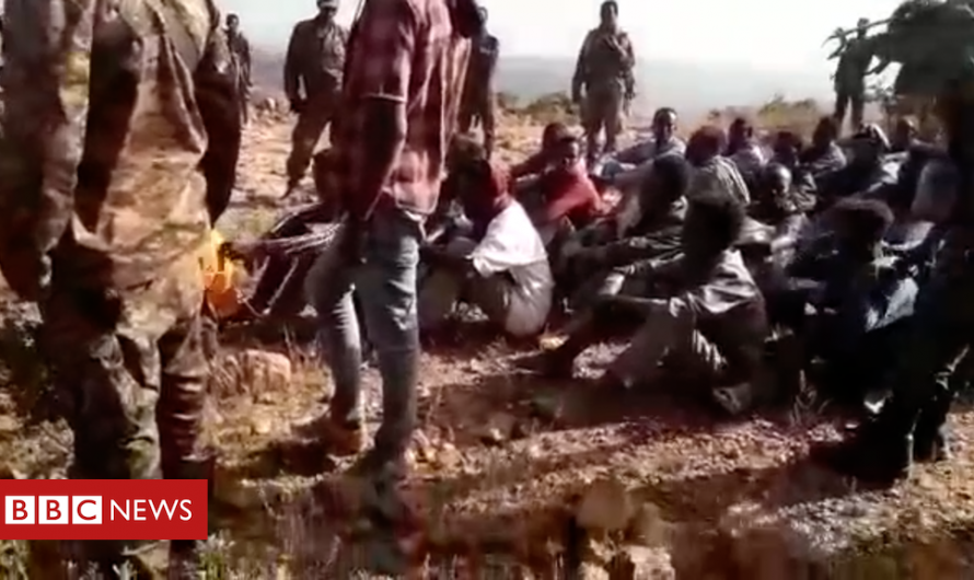 Evidence suggests Ethiopian military carried out massacre in Tigray