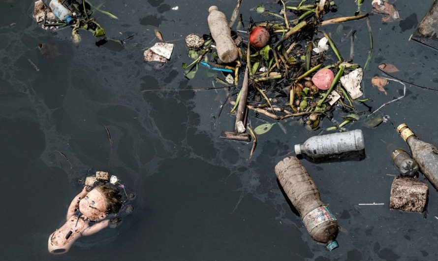 Water pollution in Rio ahead of the Olympic Games