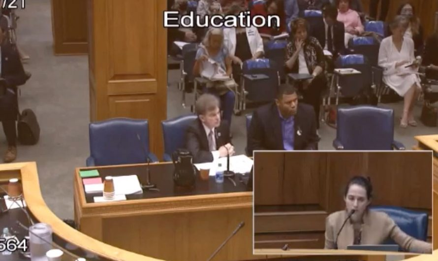 """GOP lawmaker urges schools to teach """"good"""" side of slavery — and La. hearing goes off rails"""