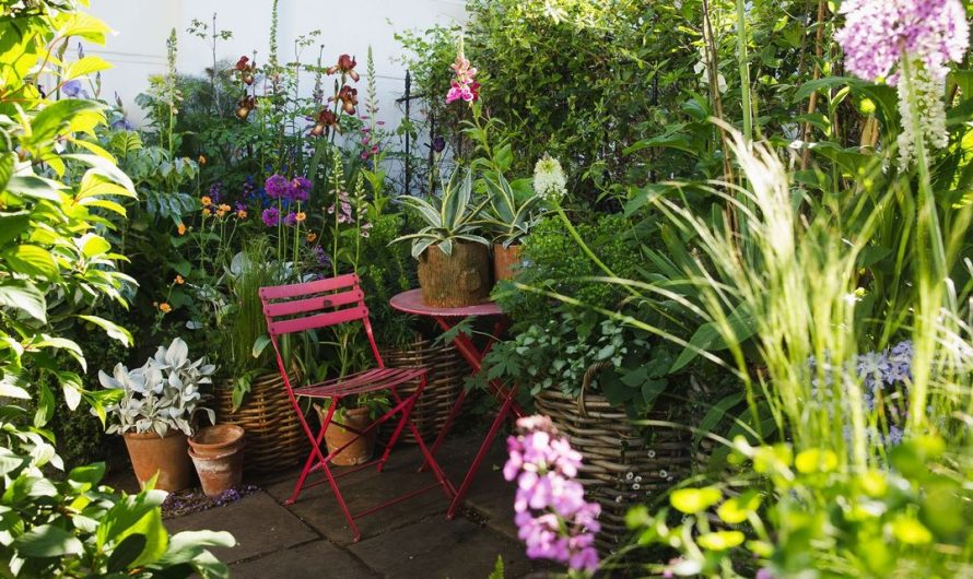How to Grow a Country Garden Without a Yard